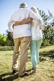 Elderly couple embracing on meadow - RKNF000174