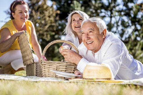 Happy elderly friends having a picnic on a meadow - RKNF000320