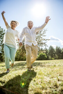 Cheerful elderly couple hand in hand on a meadow - RKNF000357
