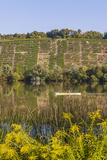 Germany, Stuttgart, woman kayaking on Neckar in front of vineyards - WDF003244