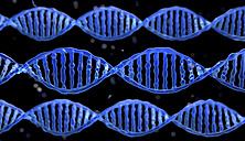 DNA-molecule - HWIF000003