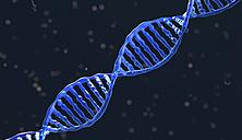 DNA-molecule - HWIF000006