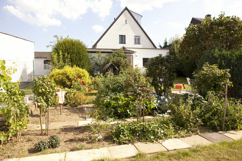 Germany, one-family house with vegetable garden in the foreground - MFRF000428