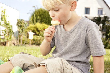 Little boy sitting on meadow in the garden eating ice lolly - MFRF000431