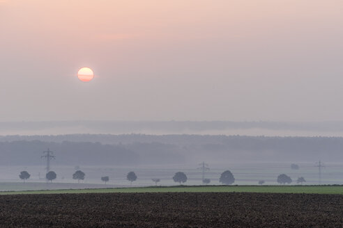 Germany, Lower Saxony, Koenigslutter, Sunrise in autumn, fog - PVCF000665