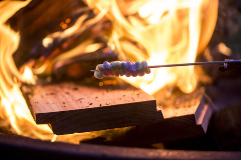Bonfire and skewer with marshmallow - SARF002101