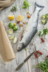 Raw salmon with ice and vegetables - DEGF000529