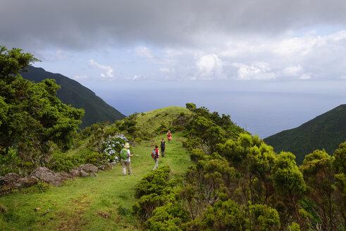 Portugal, Azores, Sao Jorge, Hikers from Piquinho da Urze to Faja da Caldeiro de Santo Christo - LB001198