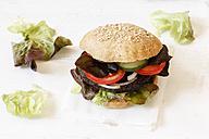Homemade veggie burger, mushroom lentil fritter - EVGF002388