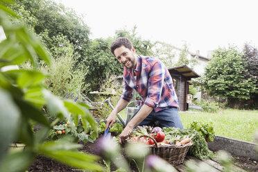 Man gardening in vegetable patch - RBF003138