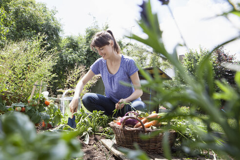 Smiling woman gardening in vegetable patch - RBF003175