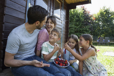 Happy family eating berries at garden shed - RBF003217