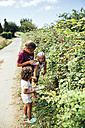 Three girls picking blackberries - MGOF000775