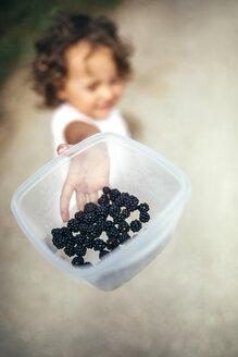 Girl's hand holding plastic box of picked blackberries - MGOF000772