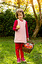 Portrait of little girl standing on a meadow with wickerbasket of apples - LVF003870
