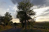 Italian, Tuscany, Province Grosseto, near Saturnia, country road in the evening - LBF001199