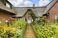 Germany, view to Frisian house with blossoming flowers in garden - KLR000108