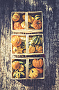 Three baskets of decorative gourds on wood - ASCF000392