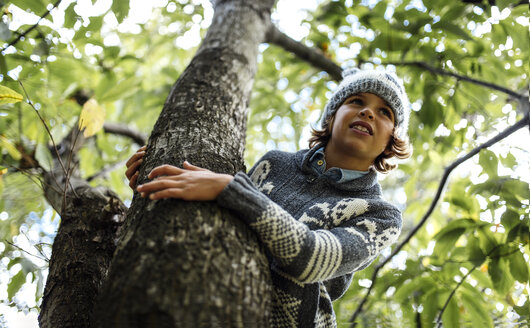 Portrait of boy wearing autumn fashion climbing on a tree - MGOF000791