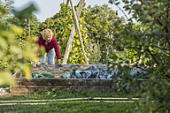 Senior woman gardening in vegetable patch - UUF005730