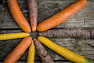 Different carrots on wood - SARF002140