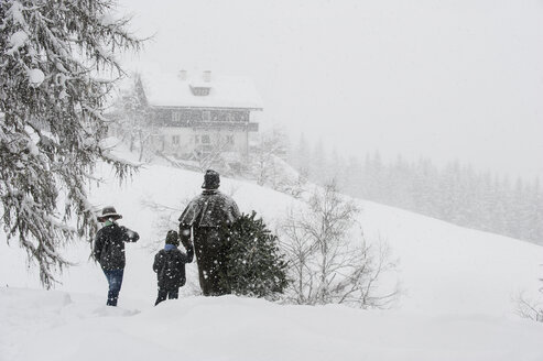 Austria, Altenmarkt-Zauchensee, father with two sons carrying Christmas tree in winter landscape - HHF005371