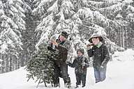 Austria, Altenmarkt-Zauchensee, father with two sons carrying Christmas tree in winter landscape - HHF005374