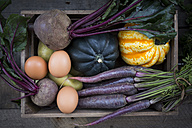 Wooden box of different organic vegetables - LVF003931