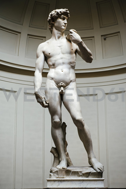 Italy, Florence, Michelangelo's David in Galleria dell'Accademia - GEM000436