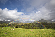 Ireland, County Galway, Connemara National Park, rainbow - ELF001622