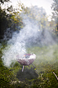 Smoking barbecue grill in garden - SARF002202