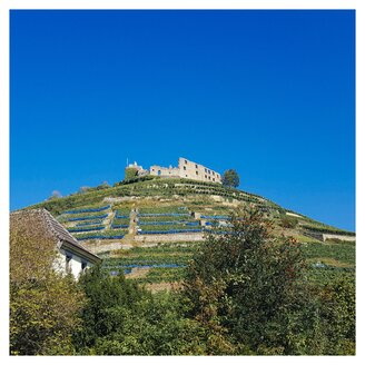Germany, Baden-Wuerttemberg, castle ruin Staufen - ELF001641