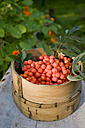 Rowanberries in basket - GISF000177