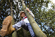 Blond boy climbing on trees - MGOF000869