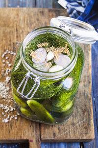 Gherkins fermenting, preserving jar - SBDF002377