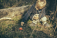 Little boy poking a fly agaric, Amanita muscaria - MFF002404