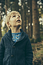 Little boy standing in forest looking up in wonder - MFF002428