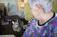 Senior woman and tabby cat on the couch at home looking at each other - RAEF000566