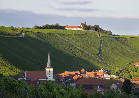 Germany, Lower Franconia, Escherndorf and Vogelsburg Castle surrounded by vinyards - SIEF006825