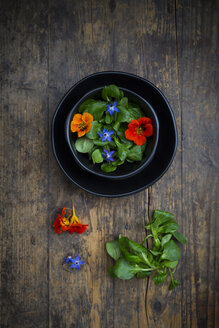 Bowl of lamb's lettuce with blossoms of borage and Indian cress - LVF004058