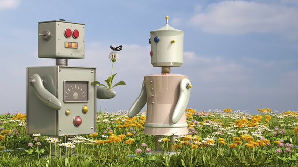 Male and female robot standing on flower meadow, 3D rendering - UWF000636