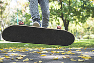 Boy with skateboard in park in autumn - DEGF000562