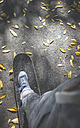 Boy standing on skateboard on path with autumn leaves - DEGF000568