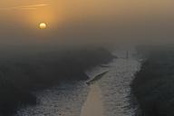 Germany, Schleswig-Holstein, North Frisia, Westerhever, salt marsh at sunset - KEBF000279