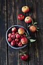 Bowl of different sorts of red apples on dark wood - CSF026577