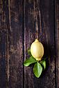 Lemon with leaves on dark wood - CSF026646