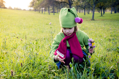 Germany, Baden-Wuerttemberg, little girl with picked flowers crouching on a meadow - LVF004122