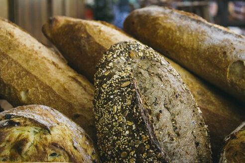 Assortment of fresh bread - ABZF000145