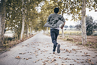 Spain, Tarragona, back view of young man running on autumnal country road - JRFF000185