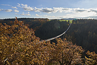 Germany, Rhineland-Palatinate, Hunsrueck, Saar-Hunsrueck-Steig, Swing Bridge Geierlay - BSCF000506